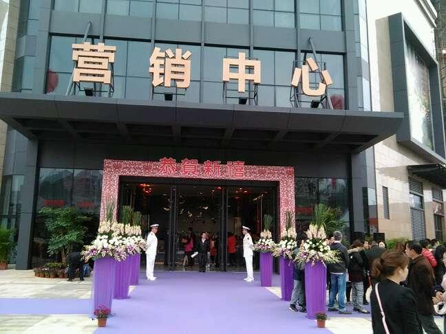 宏發嘉域樣板房今日開放 - 深圳房地產信息網論壇圖片