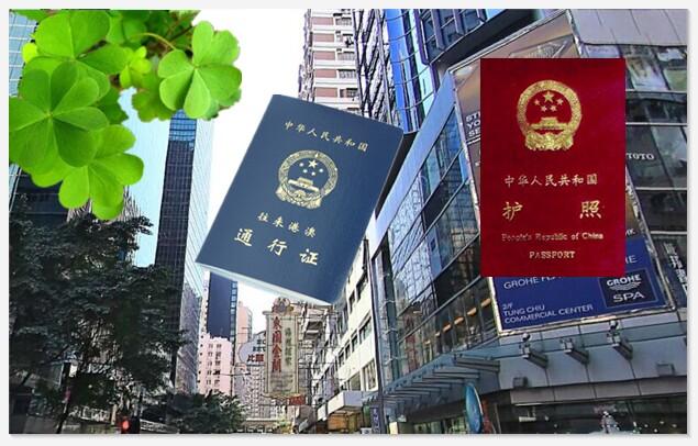 香港护照办理流程