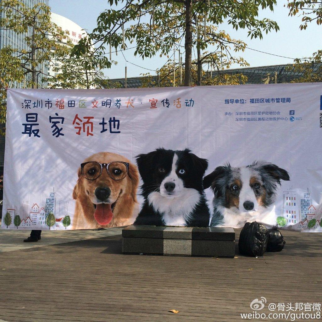 福田爱护动物协会