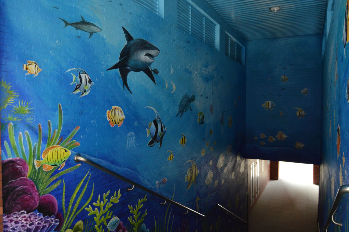 【视频】分享手工.涂鸦 国内手绘达人绘制超赞逼真海底世界手绘墙涂鸦