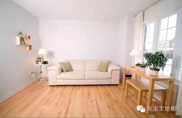 客厅装修设计木地板贴图